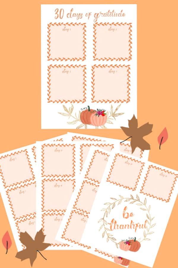 Find inspiration and remind yourself to give thanks this season. Free gratitude printables, journal prompts, wall art, & crafts, including embroidery and Cricut tutorials.  #gratitude #journal #ideas #free #printables #cricut #embroidery #wallart
