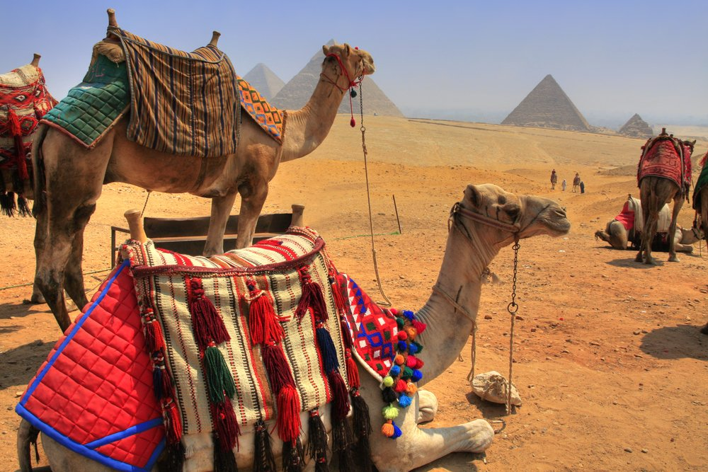 5 Money Saving Secrets For Tourists Travelling To Egypt