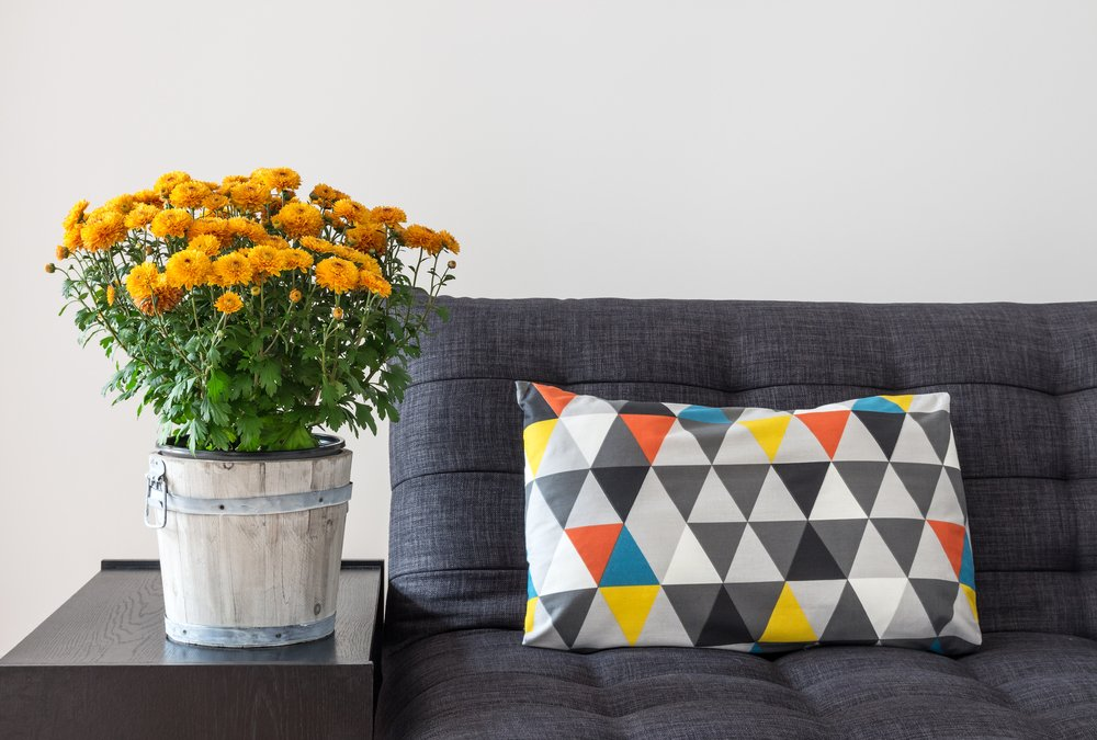 It is time to transition your home from the light and bright feels of summer to the cozy feels of colder weather. Here are a few ways to welcome fall.